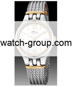 Watch strap company Lotus model BA03998. Strap Watch Lotus 18447/2
