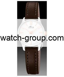 Watch strap company Lotus model BC10072. Strap Watch Lotus 18573/2